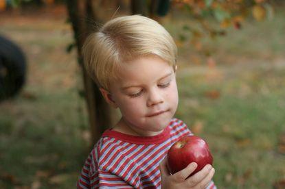 junge mit apfel © Flickr / Fauxtoman