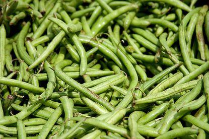 Grüne Bohnen © Flickr / Jimmy_Joe