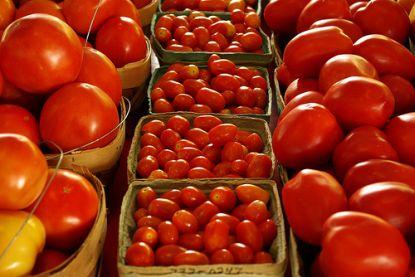 Unterschiedliche Tomaten © Flickr / House Of Sims