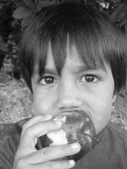 Kinder sollten mehr Obst essen. © Flickr / said&done